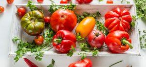 Nightshade Foods Intolerance