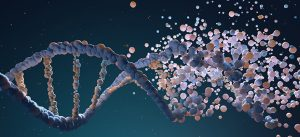 Nutrition & how it can effect your Epigenome