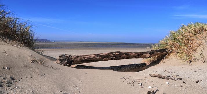 crow point taw and torridge estuary